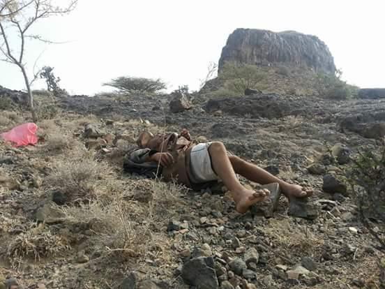صوره لأحد قتلى مليشيات الحوثي في الصبيحة